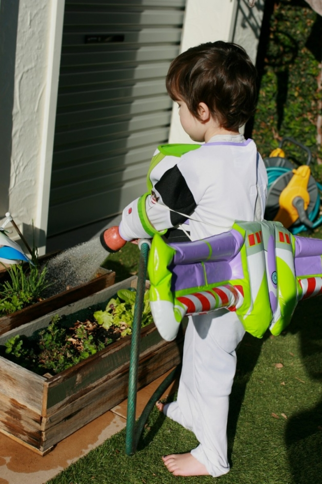 Buzz light year does gardening